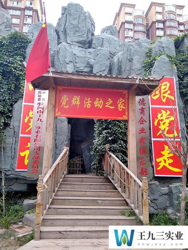 河南王九三党支部挂牌成立